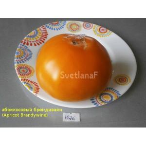 Абрикосовый Брендивайн (Apricot Brandywine)
