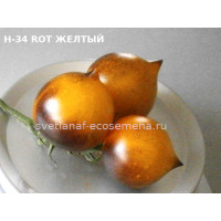 H-34 ROT желтый