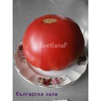 Българска Хала (Blgarska Hala)