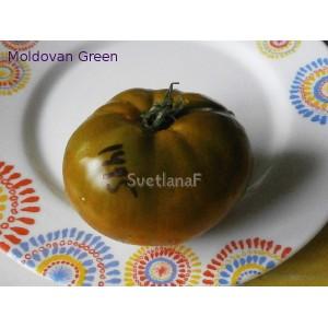 Moldovan Green (Молдавский зеленый, молдован грин)