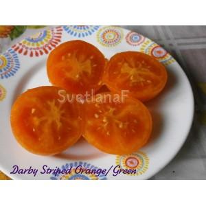 Darby Striped Orange/Green  (Дарби Полосатый Оранжево-Зеленый)