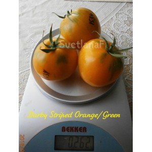 Darby Striped Orange/Green