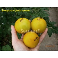 Kangaroo paw green (Зеленая Лапа Кенгуру)