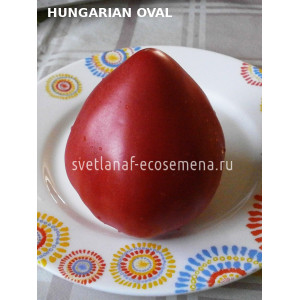 Венгерский овал (Hungarian Oval)