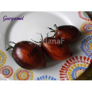 Gargamel (Гаргамель)
