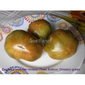 Деревья нижняя полоса (Trees Bottom Streaks) -green