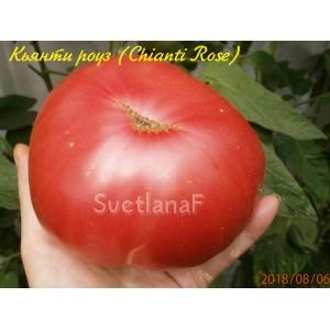 Chianti Rose (Кьянти роуз)