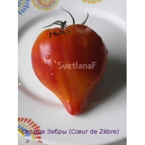 Сердце Зебры (Cœur de Zèbre)
