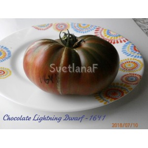 Chocolate LightningDwarf (Шоколадная молния)
