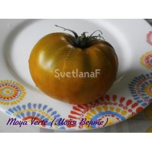 Moya Verte (Мойя Верте)