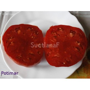 Potimar (Потимар)