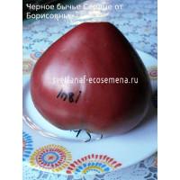 Черное бычье Сердце  от Борисовны