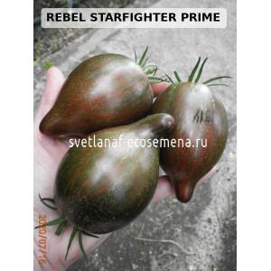 REBEL STARFIGHTER PRIME