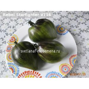 Rebel Starfighter VT16