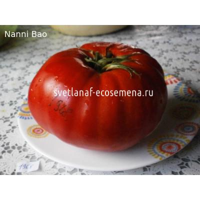 Nanni Bao (Нанни Бао)