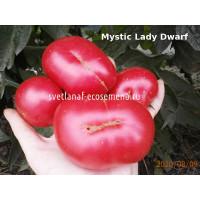 Mystic Lady Dwarf