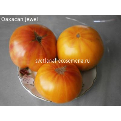 Оаксаканская драгоценность (Oaxacan Jewel)