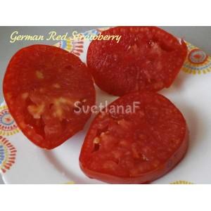Клубника красная немецкая(German Red Strawberry)
