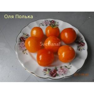 Оля Полька (Ola Polka)