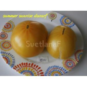 Summer sunrise dwarf  (Летний рассвет)