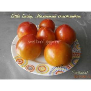 Little Lucky (маленький счастливчик)