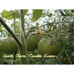 Santa Clara  (Санта Клара)