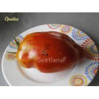 Опалка (Opalka)