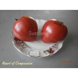 Heart of Compassion (Сердце доброты)