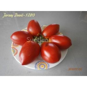 Jersey Devil -1280 (Джерси Дьявол)