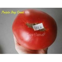 Бухта Пурпурной Собаки (Purple Dog Creek)