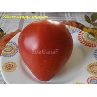 Бычье сердце красное домашнее (Bych'e serdce krasnoe domashnee)