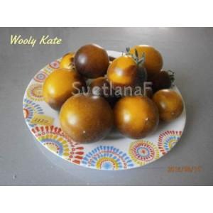 Мохнатый Кейт (Wooly Kate) желтый