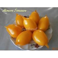 Сокровище (Akmore Treasure)