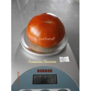 Tasmanian Chocolate (Тасманский шоколад)