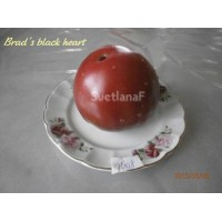 Черное сердце Бреда (Brad's black heart)