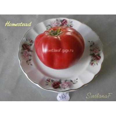 Homestead (Хоумстед, Усадьба)