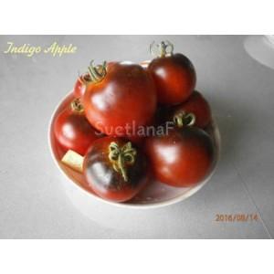 Синее яблоко (Indigo Apple)