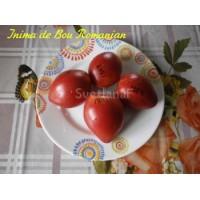 Inima de Bou Romanian