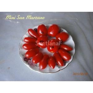 Mini San Marzano (Мини Сан-Марцано)