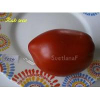 Rab srce (Сердце Раба)