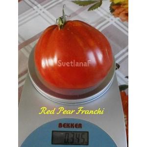 Red Pear Franchi (Красная груша Франчи)